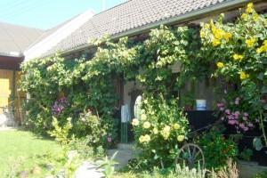 Burgenland-27--30Sep2007-00094
